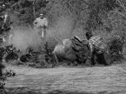 Gabor Gasztonyi_Crash at Nemiah Mountain Race