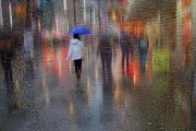 Michele_Broadfoot_Lights and Rainy Nights