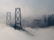 Terry_Beaupre_Floating On Fog