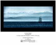 A Pirate's DelightTracey Harper  MPA SPA  F/PPOC-BC CDC, F/SWPP07 Pictorial/FloralExcellence