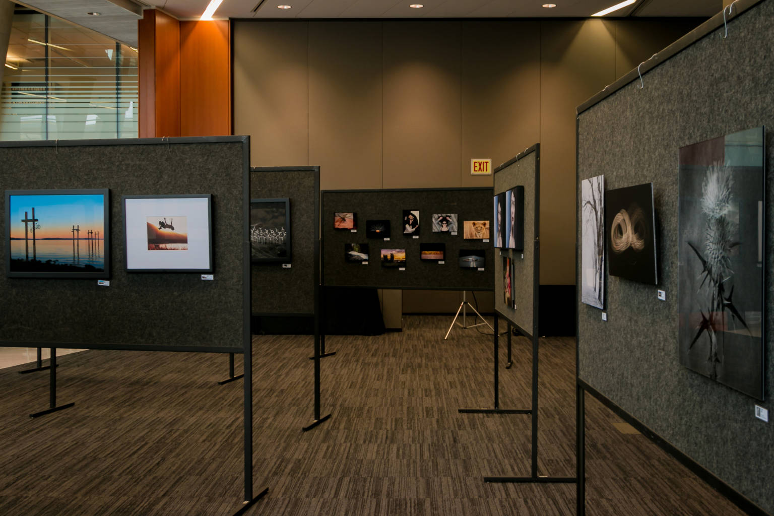 PHOTOGraphie Festival 2015, 2015-09-25, SONY Gallery Exhibition, Anvil Centre, New Westminster BC, PPOC, BC Region